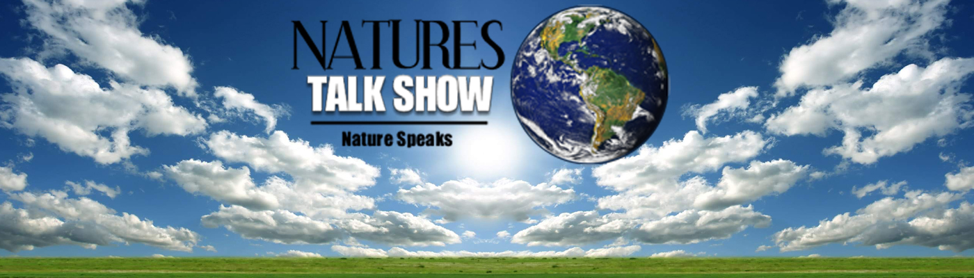 Natures Talk Show – Fine Art of Paleontology – Paleo Enviroments – Plant Fossils