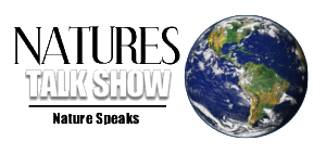 naturestalkshowlogosize