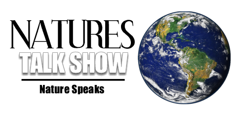 naturestalkshowlogosize1