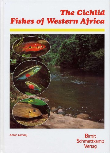 Cichlid Fishes O fWestern Africa Large